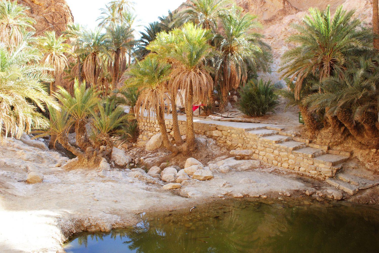 Chebika Oasis Tunisia