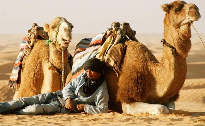 Sahara desert Douz
