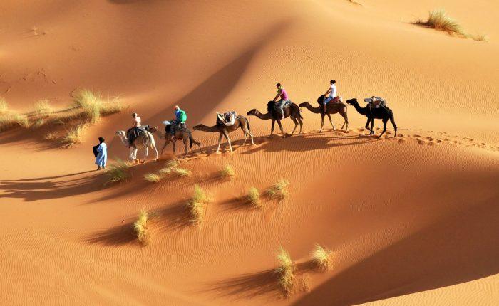 Overnight in Sahara Desert with Camel ride from Djerba